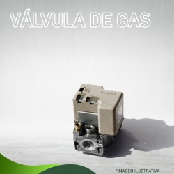 VÁLVULA DE GAS L.P.