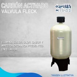 CAF24 VALVULA FLECK