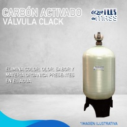 CAF-60 VALVULA CLACK/WS3