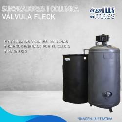 "S900  2"" VALVULA FLECK"